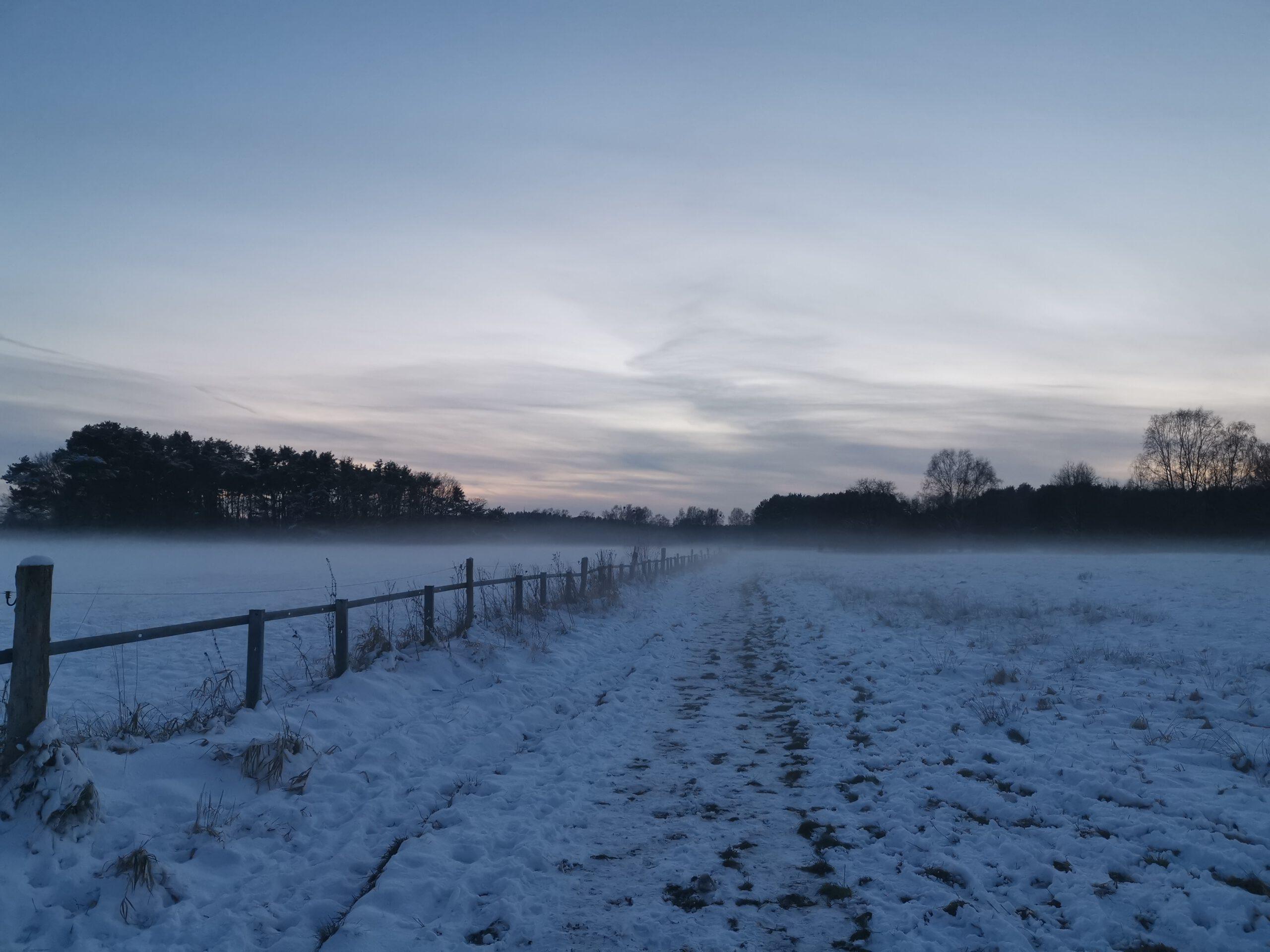 Januar 2021 - Landschaft